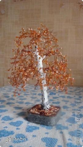 Дерево- светильник на день рождения. Немного неудачно получился фонарь, покосился. Отдельно включается фонарь, и еще светодиод на дереве, которые меняют цвет. фото 4