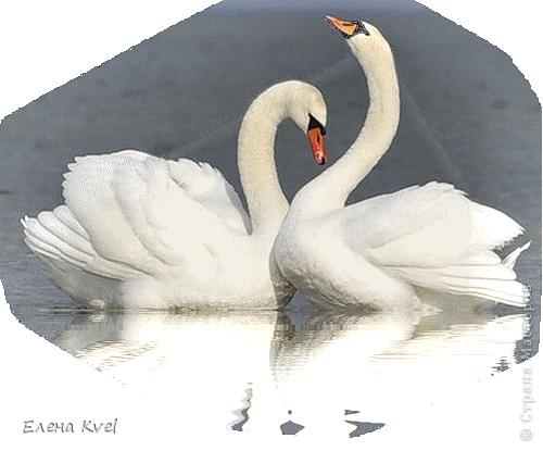 """Свадебные бокалы """"Нежность лебедя..."""" или """"Лебединая нежность..."""" фото 9"""
