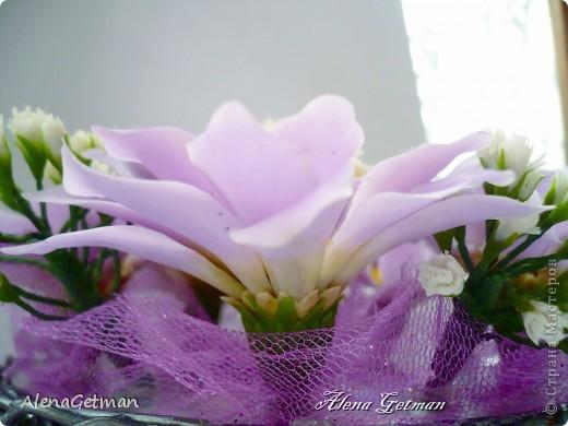 Скромное очарование хризантемы… Царицы осени златой, О ней слагаются поэмы, Миниатюры солнца - красотой. О ней неоспоримы факты Величием совершенности простой… фото 5