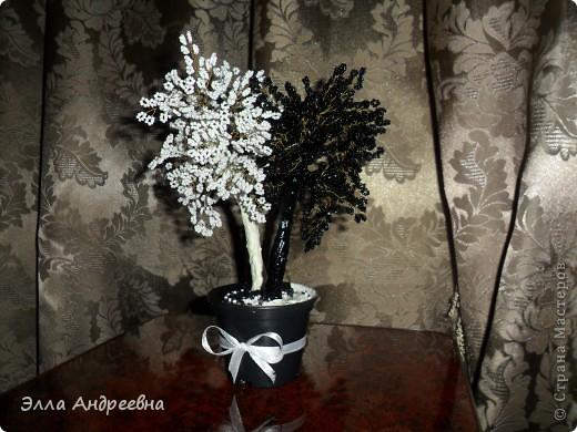Еще одно деревце Инь-Ян. Сделано в подарок начальнице на день рождения и уже передано своей новой хозяйке... фото 1