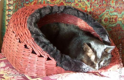 Спасибо Милаше за МК. Кошкин дом. У нас в семье, вот уже 11 лет живет кот Феликс. Решила я ему сплести домик, когда плела очень переживала, а будет ли домик нужен Феликсу, но мои опасение оказались напрасными. Домик полюбился практически с первой минуты. фото 6