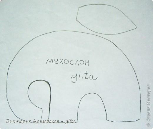 Мухослон вкуснопахнущий, родился в апреле 2010 года) фото 2