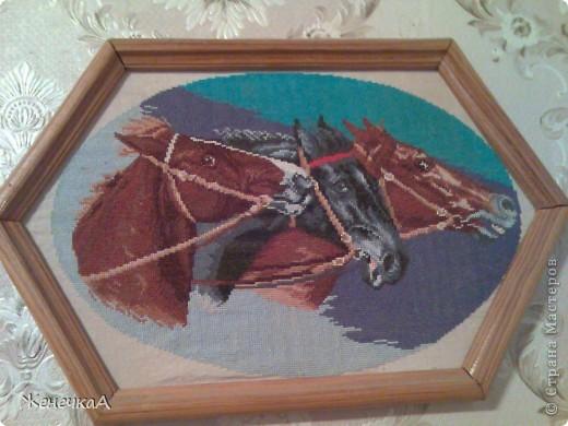 Немного вышивки крестом фото 9