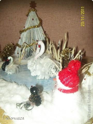 Лебединная озеро!!! фото 8