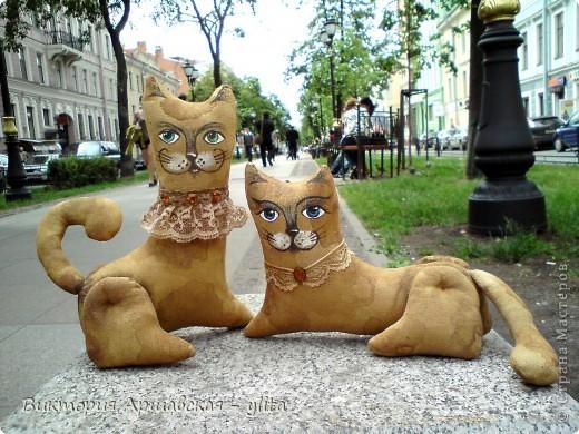 Петербургские коты!