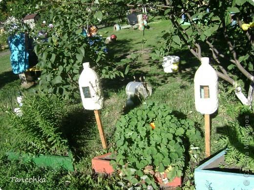 """Вот так мы оформили свой участок летом 2011 года! Все сделано своими руками. Божьи коровки из касок удобно расположились на """"цветочных"""" пенечках. А рядом цветочки из пластиковых бутылок. фото 4"""