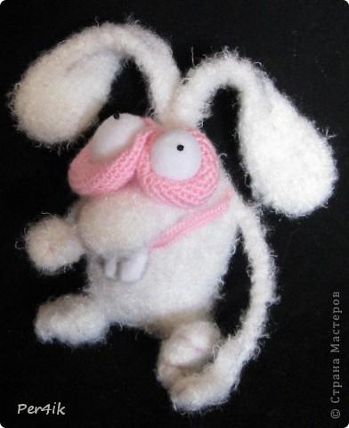 Хышный крол фото 2