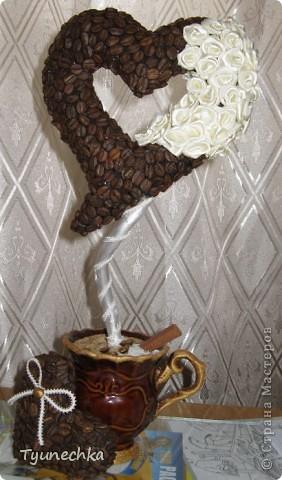 """Вот такое деревце вырастили вместе с дочерью в подарок для любимой подружки. Деревце творили вот по этому МК https://stranamasterov.ru/node/124256?c=favorite , СПАСИБО автору!!! Но в процессе работы, нанюхавшись до одурения кофе, вдруг поняли, что неплохо было-бы к кофе добавить немного сливок :))) Роль """"сливок"""" сыграли мелкие розочки из атласной ленты молочного цвета...  Муторная работа, хочу вам сказать, но результатом остались ОООООЧЕНЬ довольны!!! Реакцией подружки на подарок - тоже! :)))) фото 5"""