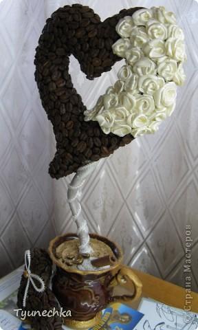 """Вот такое деревце вырастили вместе с дочерью в подарок для любимой подружки. Деревце творили вот по этому МК https://stranamasterov.ru/node/124256?c=favorite , СПАСИБО автору!!! Но в процессе работы, нанюхавшись до одурения кофе, вдруг поняли, что неплохо было-бы к кофе добавить немного сливок :))) Роль """"сливок"""" сыграли мелкие розочки из атласной ленты молочного цвета...  Муторная работа, хочу вам сказать, но результатом остались ОООООЧЕНЬ довольны!!! Реакцией подружки на подарок - тоже! :)))) фото 4"""