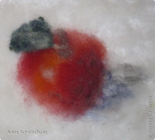 Яблоко из кардочеса. Аня делала с натуры. Общий размер 18Х21.   фото 1