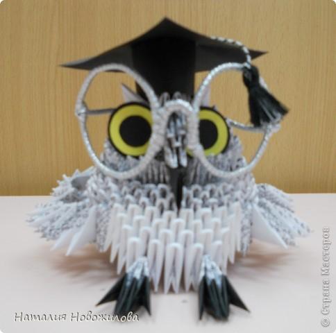 модульное Умная сова