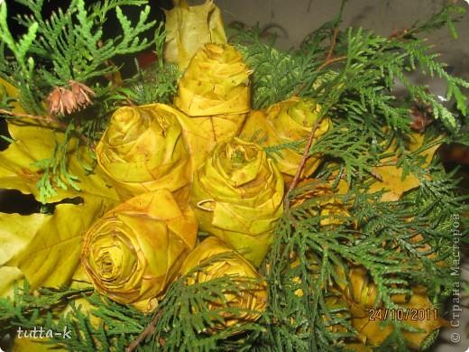эти розы обработаны воском, мне кажется, они лучше сохранили свой цвет  фото 1