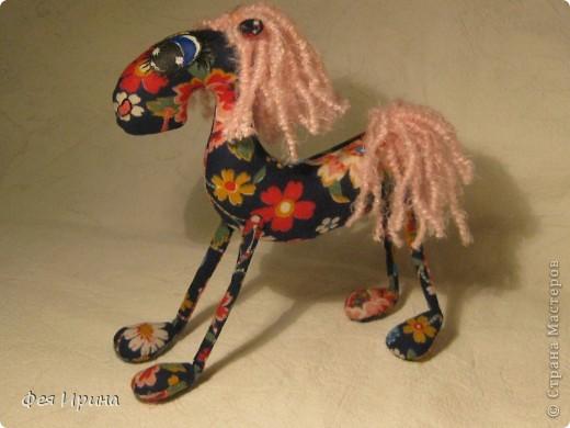 Лучше пони- только кони! фото 4