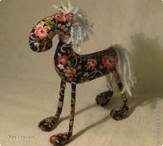 Лучше пони- только кони! фото 6