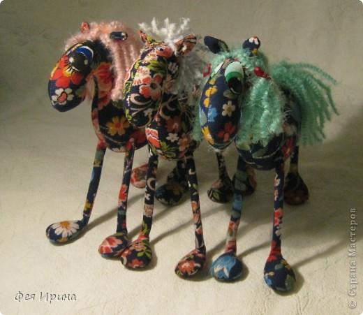 Лучше пони- только кони! фото 1