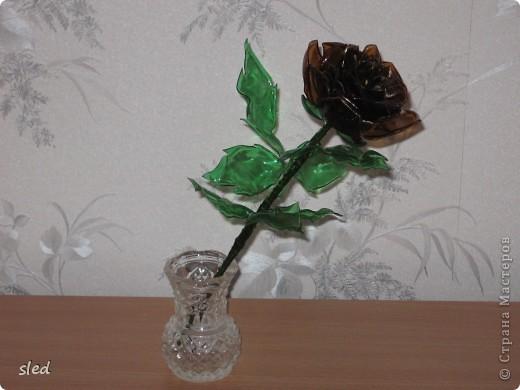 В стране уже много бабочек из бутылок, хочу показать и моих. С них все начиналось. фото 4