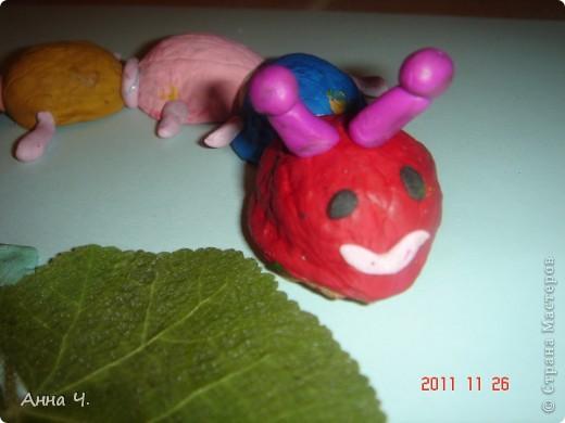 Саша (3,5) раскрасил скорлупки грецких орехов гуашью, слепил их между собой пластилином, сделал ножки, рожки, глазки, ротик (чтоб гусеница улыбалась!) и конечно же листочки которые очень любит гусеничка.  фото 2