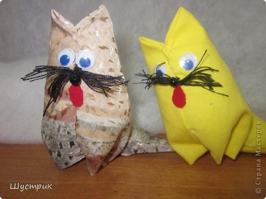 Кошечка в подарок фото 2