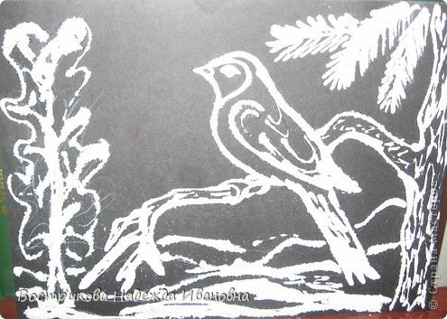 Рисование солью  сначала нужно сделать рисунок клеем ПВА на бумаге, затем засыпать всё солью, после высыхания стряхнуть лишнюю соль. фото 11