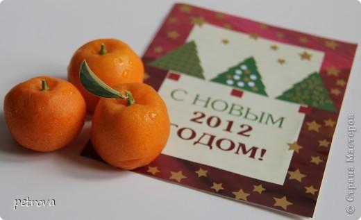 Спрашивают - какие на вкус мандарины, выращенные на балконе. Если посмотрите этот репортаж до конца - увидите.   Вот они какие красивые ...   фото 13
