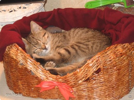 Мэги кроватка понравилась, вот как сладко девочка спит...