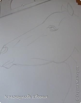Здравствуйте! Я хочу показать вам, как рисовать голову лошади. Это очень просто!  фото 7