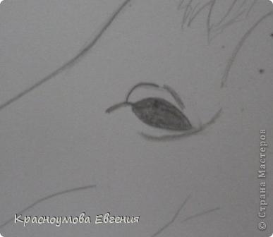 Здравствуйте! Я хочу показать вам, как рисовать голову лошади. Это очень просто!  фото 9