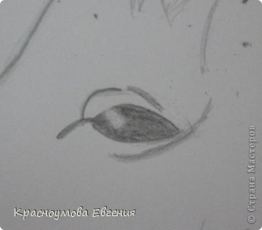 Здравствуйте! Я хочу показать вам, как рисовать голову лошади. Это очень просто!  фото 10