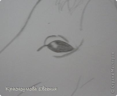 Здравствуйте! Я хочу показать вам, как рисовать голову лошади. Это очень просто!  фото 11
