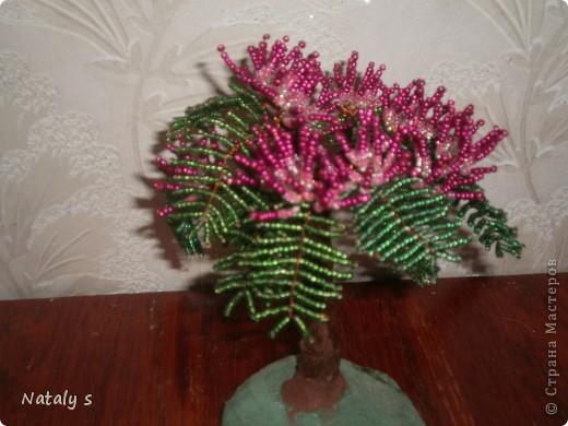 цветы и деревья бисер фото: