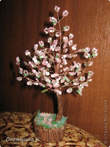 Весенние деревца фото 2