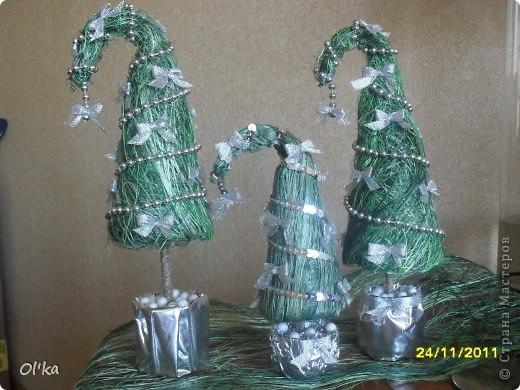 Вот такие елочки -тройняшки родились у меня в один день. :) фото 2