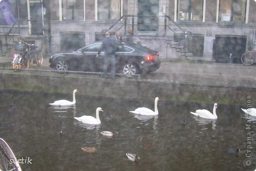 Итак, продолжим нашу прогулку по Амстердаму... Улицы узкие везде, поэтому очень много маааленьких автомобилей и , конечно, велосипедов... фото 2