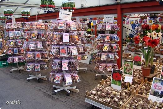 Итак, продолжим нашу прогулку по Амстердаму... Улицы узкие везде, поэтому очень много маааленьких автомобилей и , конечно, велосипедов... фото 11