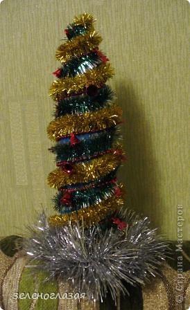 Вот и я вырастила свою новогоднюю елочку фото 1