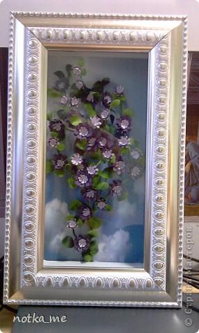 Цветы осени фото 2