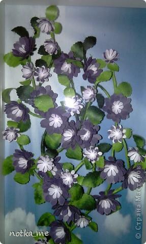 Цветы осени фото 1