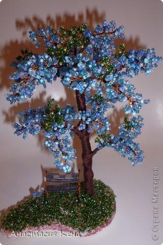 Новенькое (Дерево №3) фото 1
