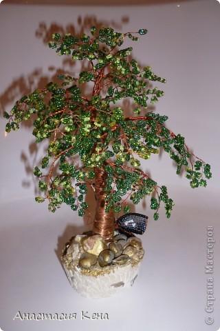 Новенькое (Дерево №3) фото 8