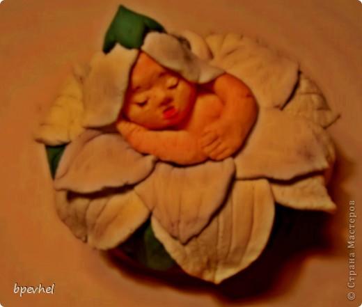 Малютка в цветке.