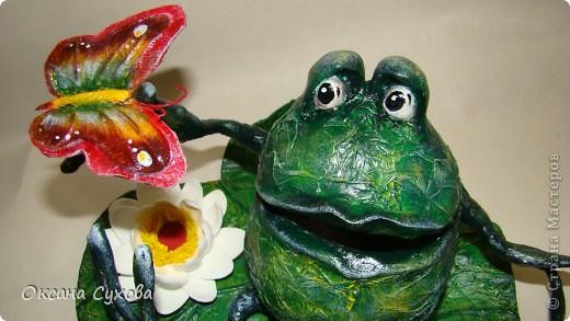 Лягушонок фото 2