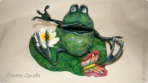 Лягушонок фото 6