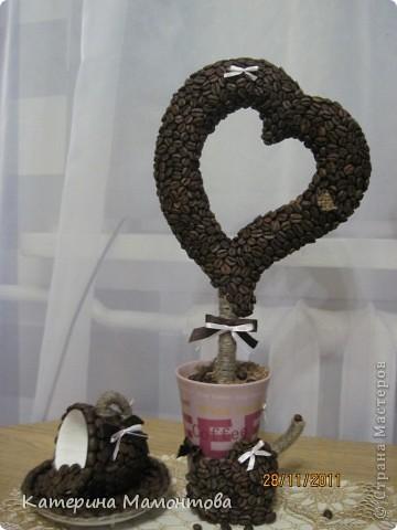 Вот у всех кофейные деревья разные.. а у меня... гигант!!! вот ведь какая, сразу режу а потом меряю((( фото 7