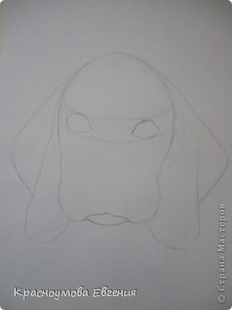 Здравствуйте! Я собираюсь показать вам, как я рисую бигля! Берите карандаш, бумагу и резинку! Приступим... фото 9