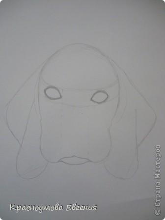 Здравствуйте! Я собираюсь показать вам, как я рисую бигля! Берите карандаш, бумагу и резинку! Приступим... фото 10