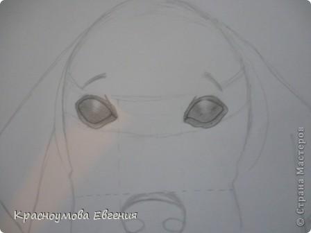 Здравствуйте! Я собираюсь показать вам, как я рисую бигля! Берите карандаш, бумагу и резинку! Приступим... фото 17