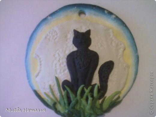 И ещё один заказ, на этот раз на день рождения для девушки. Кошка на фоне Луны и звёздного неба. фото 3