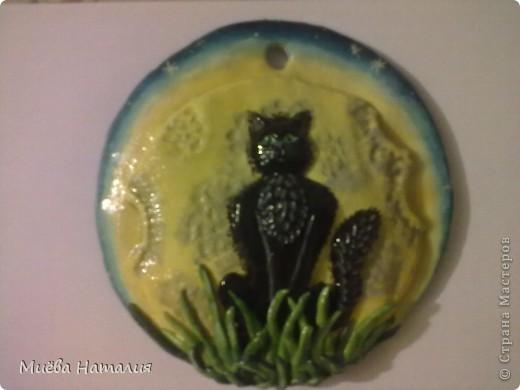 И ещё один заказ, на этот раз на день рождения для девушки. Кошка на фоне Луны и звёздного неба. фото 1