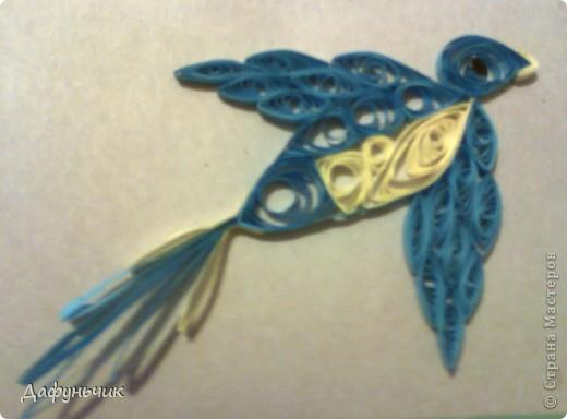 Птичка, моя первая работа фото 1