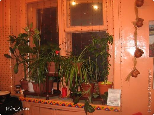 Рябиновые бусы на окно. фото 1
